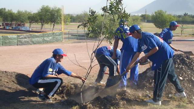 Siembra de nogales en la Academia de la Liga Mexicana de Beisbol